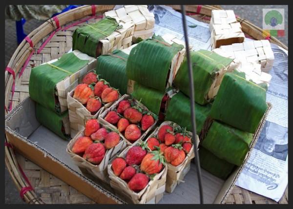 Strawberries-fruit-stall-Myanmar-Burma-600x428